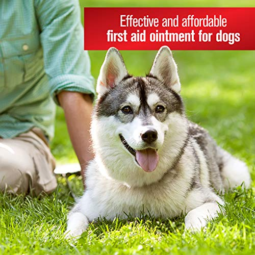 Farnam Sulfodene 3-Way Ointment for Dogs Prevent Infection ...