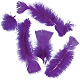 Touch of Nature 4 to 6-Inch Turkey Flat Feathers for Arts and Crafts, 14gm, Purple