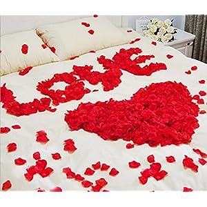 Ewandastore 1000 Pcs Fabric Silk Artificial Flower Rose Petals Wedding Favor Bridal Party Vase Decoration Table Confetti(Champagne) 4
