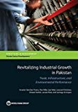 img - for Revitalizing Industrial Growth in Pakistan: Trade, Infrastructure, and Environmental Performance (Directions in Development) book / textbook / text book