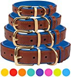 Leather Dog Collar - CollarDirect Leather Dog Collar Brass Buckle Soft Padded Puppy Small Medium Large Red Pink Blue Green Purple Yellow (Neck Fit 15