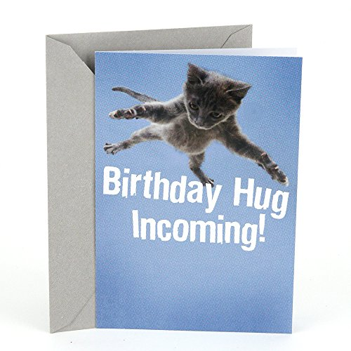Hallmark Shoebox Funny Birthday Greeting Card (Pets Unleashed Flying Cat)