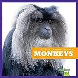 Monkeys (Bullfrog Books: My First Animal Library)