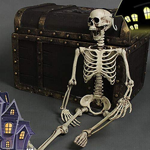 Lljin Halloween Party Decoration Poseable Full Size Human Skull Skeleton -