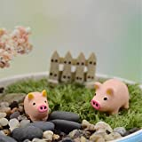 Danmu Miniature Plant Pots Bonsai Craft Micro Landscape DIY Decor Set (Piggy)