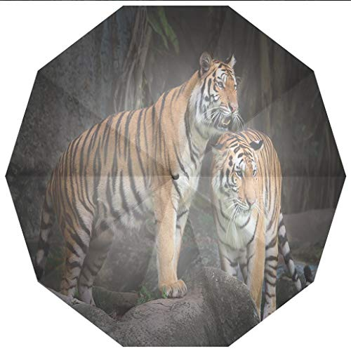 Compact Travel Umbrella UV Protection Auto Open Close Animal Decor,Tiger Couple in the Jungle on Big Rocks Image Wild Cats in Nature Windproof - Waterproof - Men - Women -Lightweight- 45 inches ()
