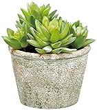 6 Inches High Artificial Sedum Succulent Plants In Pot