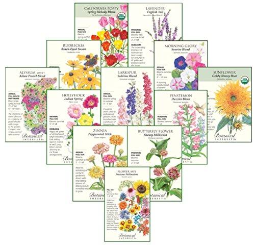 II Botanical Interests
