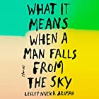 What It Means When a Man Falls from the Sky: Stories Audiobook by Lesley Nneka Arimah Narrated by Adjoa Andoh
