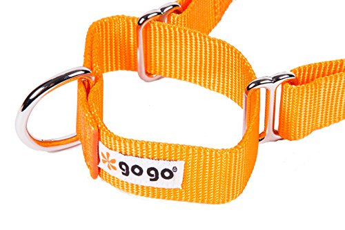 Pictures of GoGo Pet Products GoGo 3/8-Inch 15113 Orange 7