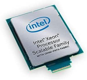 انتل BX806738164 وحدة المعالجة المركزية زيون بلاتينيوم 8164 26C 2.0 جيجاهيرتز 35.75 ميجابايت FC-LGA14