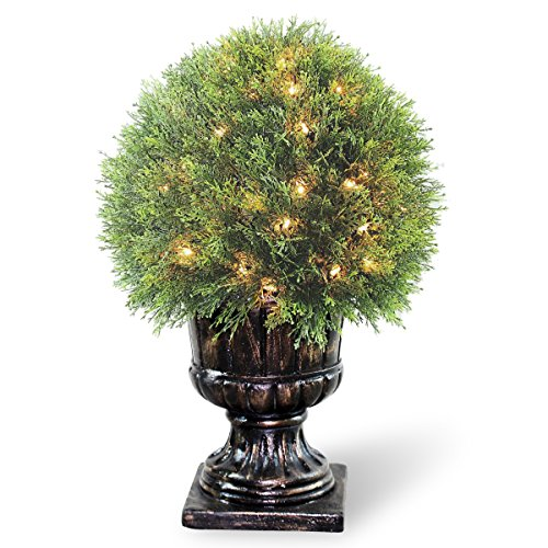 National Tree 27 Inch Upright Juniper Ball Topiary Tree with 70 Clear Lights in Decorative Urn ()