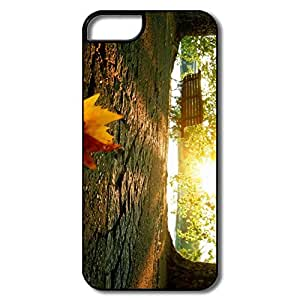 Cool Fallen Leaf Park IPhone 5/5s Case For Birthday Gift