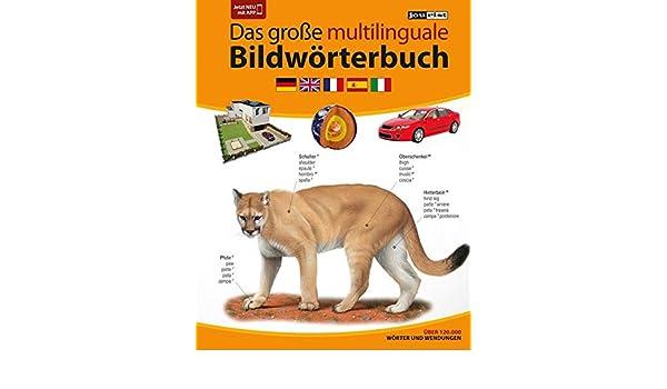 JOURIST Das große multilinguale Bildwörterbuch Deutsch-Englisch-Französisch-Spanisch-Italienisch: 120.000 Wörter und Wendungen: 9783898946537: Amazon.com: ...