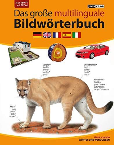 JOURIST Das große multilinguale Bildwörterbuch Deutsch-Englisch-Französisch-Spanisch-Italienisch: 120.000 Wörter und Wendungen (Spanish) Hardcover