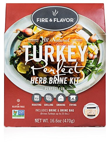 Best turkey brine kit with bag for 2019