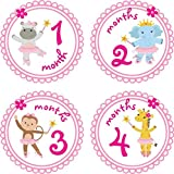 Little LillyBug Designs - Monthly Baby Stickers - Ballerina - Zoo Animals