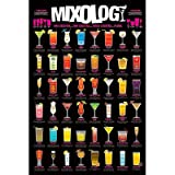 Mixology Alcoholic Drinks Poster Art Print