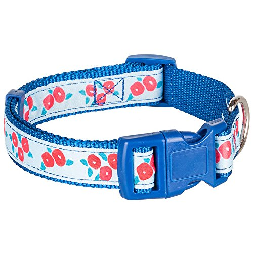 """Blueberry Pet Collars for Dogs,  Neck 14.5""""-20"""", Medium,  Spring Scent Inspired Round Flower Aquamarine Basic Dog Collar, Matching Leash Available Separately"""