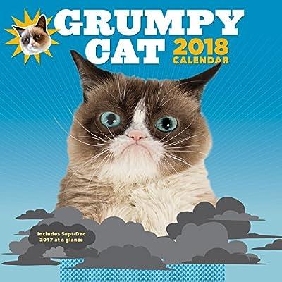2018 Wall Cal: Grumpy Cat