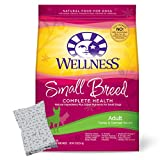 Wellness Small Breed Adult Health Dry Dog Review