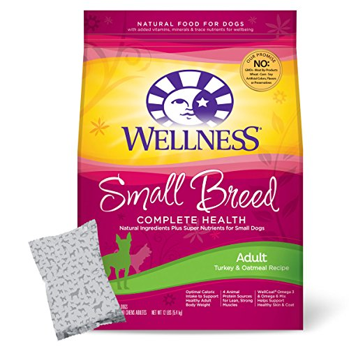 Wellness Small Breed Adult Health Dry Dog