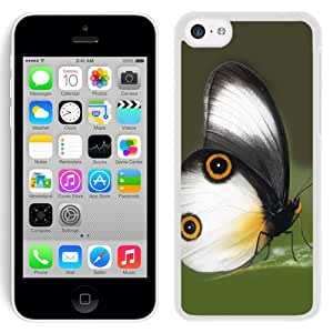 New Custom Designed Cover Case For iPhone 5C With Lovely Butterfly Animal Mobile Wallpaper (2) Phone Case