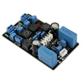 HeroNeo® TPA3116D2 50Wx2 Official Version Finished Stereo Digital Power Amplifier Board