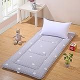 cotton thicken tatami mats mattress student dormitory mattresses folding floor mats-A 120x200cm(47x79inch)