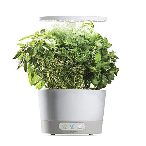 厨房也可以种菜!AeroGarde 室内蔬菜种植园今日特价