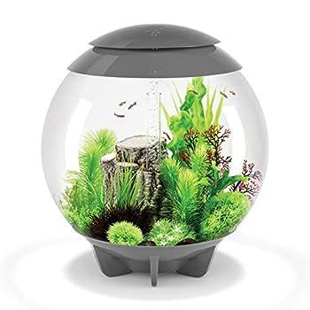 Image of biOrb Halo 15 Aquarium with MCR Lighting Pet Supplies