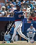 Jerome Walton Autographed chicago Cubs 8x10 Photo Bat 1989 NL ROY SGC