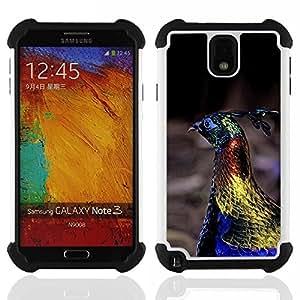 """SAMSUNG Galaxy Note 3 III / N9000 / N9005 - 3 en 1 impreso colorido de Altas Prestaciones PC Funda chaqueta Negro cubierta gel silicona suave (Pavo real del pájaro azul vibrante primavera Oro"""")"""