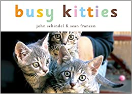Busy Kitties (A Busy Book), by John Schindel