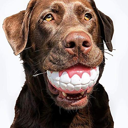 CHEECH! Share a Smile with The Incredible Fetch Ball for Medium to Large Dogs-Durable Rubber Dog Toy, Patented Design Ensures a Smile Every Time! For Sale