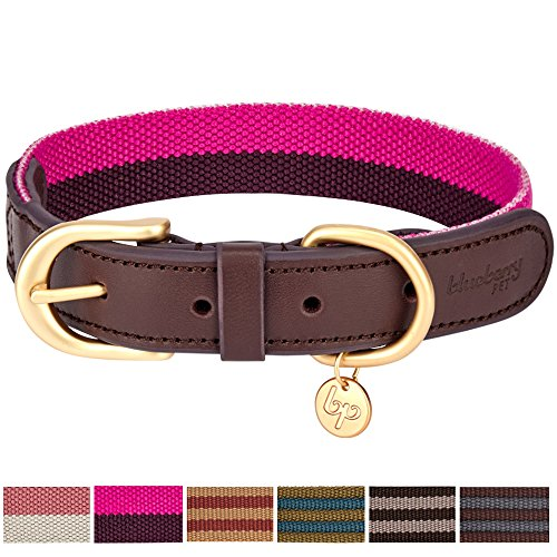 Designer Dog Collars - Blueberry Pet 6 Colors Vintage Chic Two Tone Soft Genuine Leather and Polyester Webbing Dog Collar in Hot Pink and Purple, Small, Neck 12