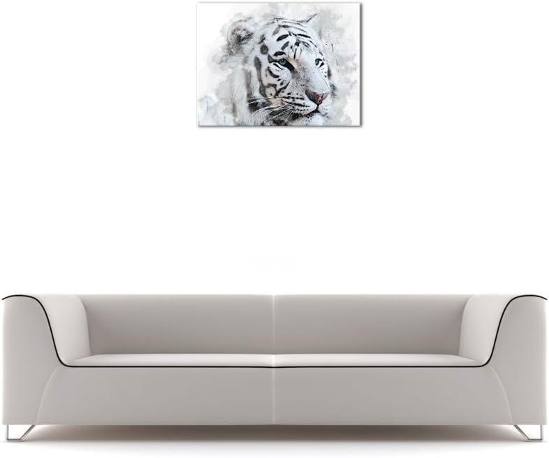 Bilderdepot24 Cuadros en Lienzo Lámina Reproducción Acuarela Tigre Blanco II 100 x 50 cm 5 Piezas - Listo tensa, Directamente Desde el Fabricante: Amazon.es: Hogar