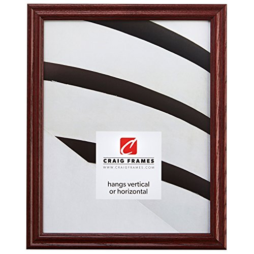 Craig Frames 200ASH 17 by 21-Inch Picture Frame, Wood Grain Finish, 0.75