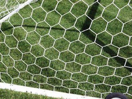 First Team 3mm Hexagonal Soccer Net