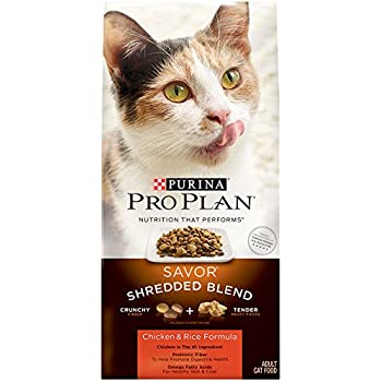 Cat Food Pro Plan International