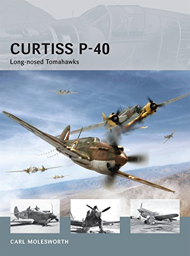 Curtiss P-40 Long-nosed Tomahawks (Air - Model Vanguard