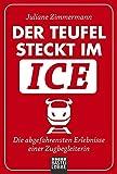Allgemeine Reihe. Bastei Lübbe Taschenbücher: Der Teufel steckt im ICE: Die abgefahrensten Erlebnisse einer Zugbegleiterin