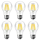 Ascher E26 LED Classic Light Bulbs / 8W - Best Reviews Guide