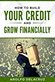 How To Build Your Credit & Grow Financially: Step By Step Guide (Bestseller)