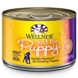 Wellness Natural Food for Pets Complete Health Natural Wet Canned Dog Food, Just for Puppy Chicken and Salmon Recipe, 6-Ounce Can (Pack of 24)