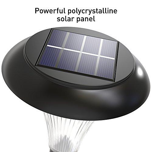 Long Lasting Solar Lights Outdoor Solar Pathway Lights