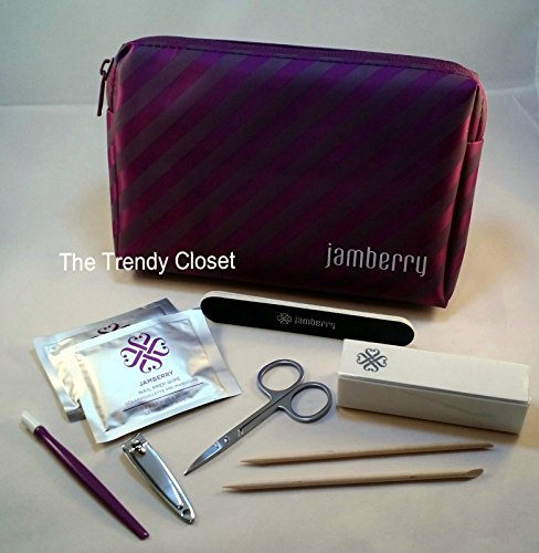 Jamberry Nails- New Application Kit with Purple Carrying