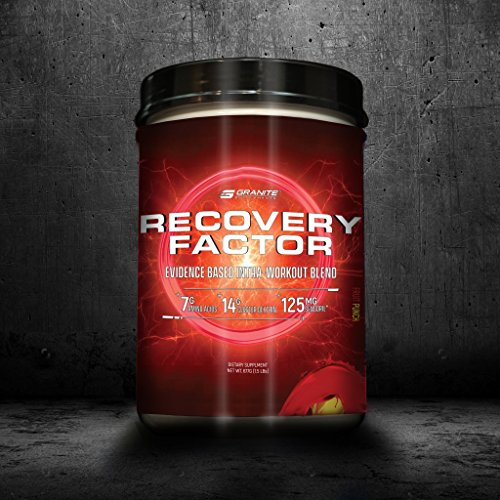 Granite Supplements Recovery Factor X Premium Intra-Workout Blend Cosmic Punch 2 lbs