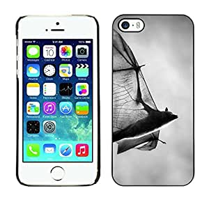 TaiTech / Hard Protective Case Cover - Halloween Black White Dracula - Apple iPhone 5 / 5S