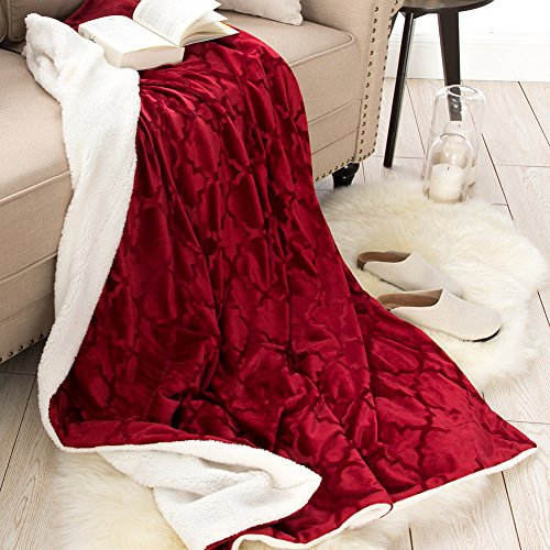 Price comparison product image Sherpa Blankets Throws for Womens Girls Faux Furs Fleeces Youth Mens Winter Boyfriends Valentines Fuzzy Soft Warm Plush Fluffy Pretty Washable Cozy TV Blanket, Travel Size 50x60 Rust Red